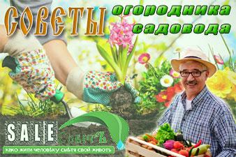 Советы огородникам-садоводам